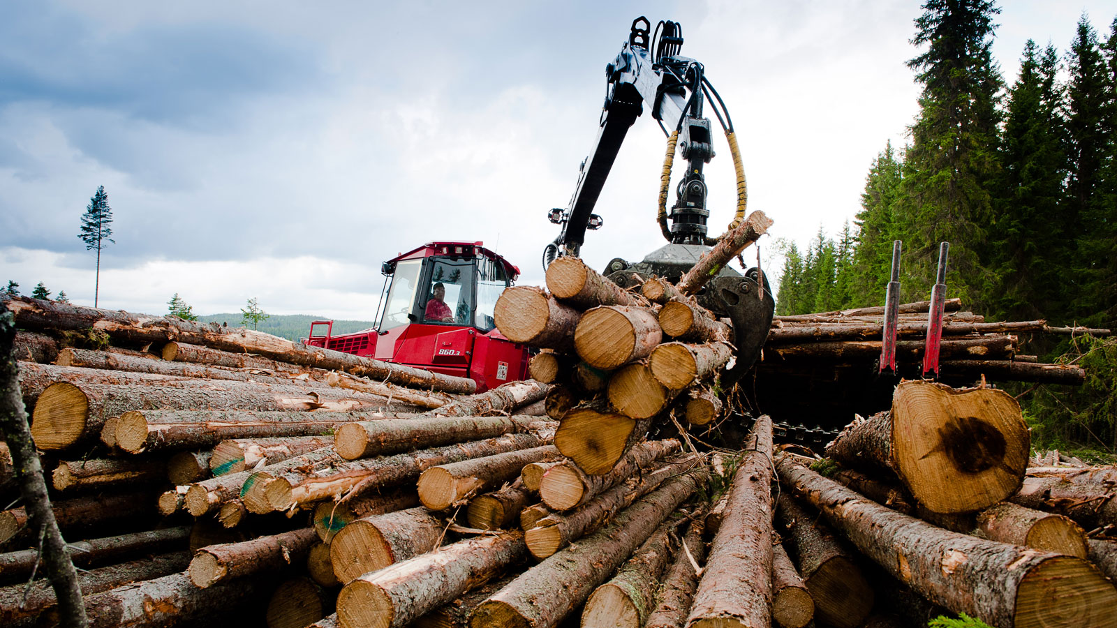 Skogsdrift i Søndre Land