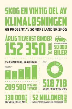 Fakta om skog i Søndre Land