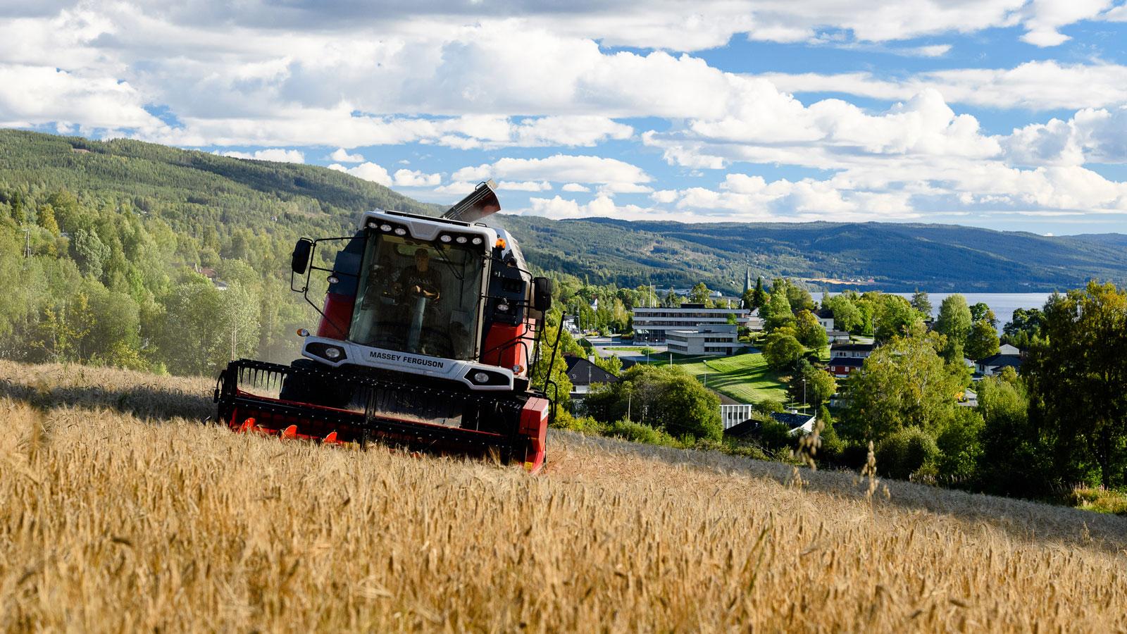 Landbruk, Søndre Land kommune, Søndre Land