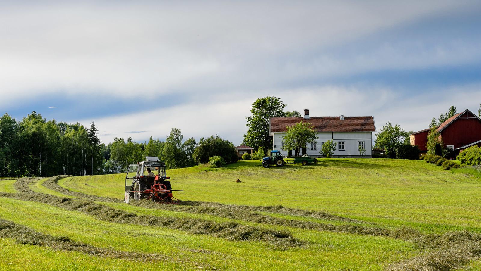 Landbruk, Søndre Land