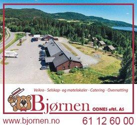 Bjørnen Odnes
