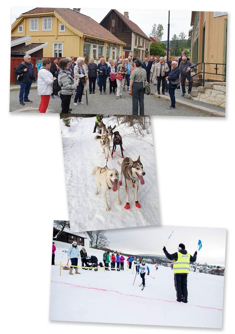 Busstur til Maihaugen, aktivitetsdag med hundekjøring og barneskirenn. Frivilligsentralen er involvert i mange aktiviteter.